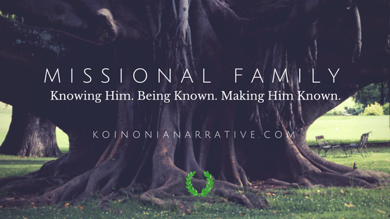 Missional Family Blog Header (2)